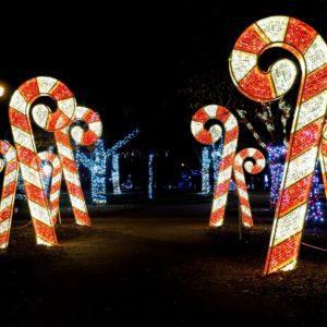 3 dimensional illuminated candy cane