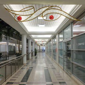 taupo corridor display