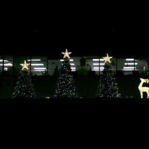 1190 Hornby Avenue Christmas Decor
