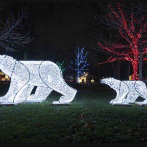 tiksi bear illuminated displays in gage park