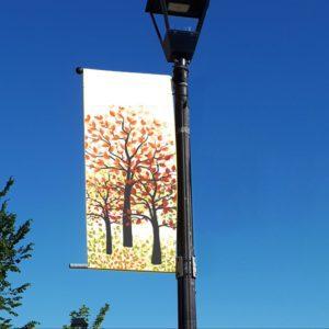 autumn trees banner