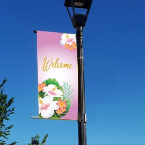 hibiscus 1 banner