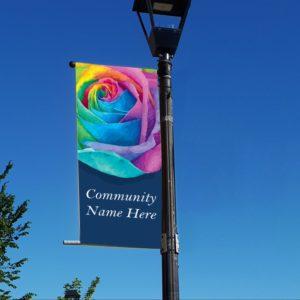rainbow rose banner