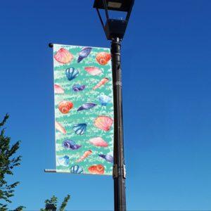 sea shells banner
