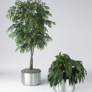 Stainless Steel flower Planter